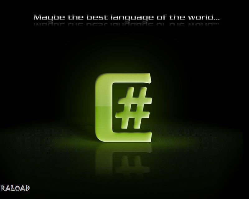 C# Programmer